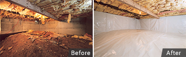 Call now for wet crawl space & wet basement free estimate