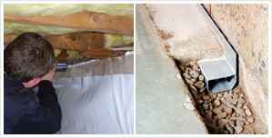 Moisture control services we offer
