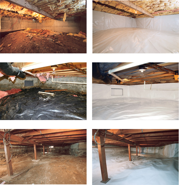 Crawl Space Before After